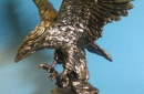geschenkideen050-adler-bei-gravotec-gravuren-und-schilder-aus-munster